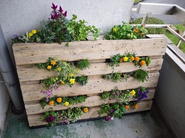 Giardino verticale sul balcone di casa milleideegreen - Giardino verticale in casa ...